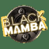 블랙 맘바