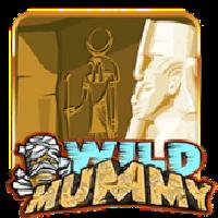 WildMummySlots
